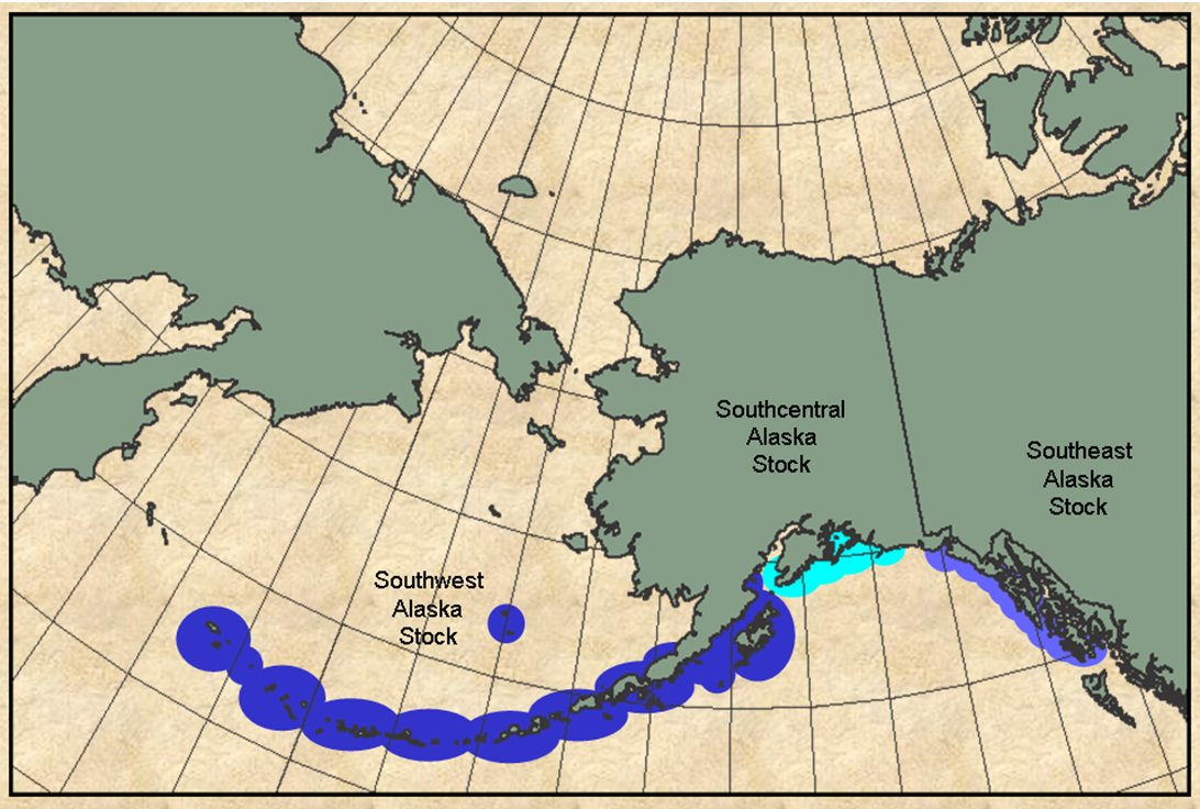 Map Of Alaska And Canada Showing Sea Otters From Southern Alaska Across The Aleutian Islands